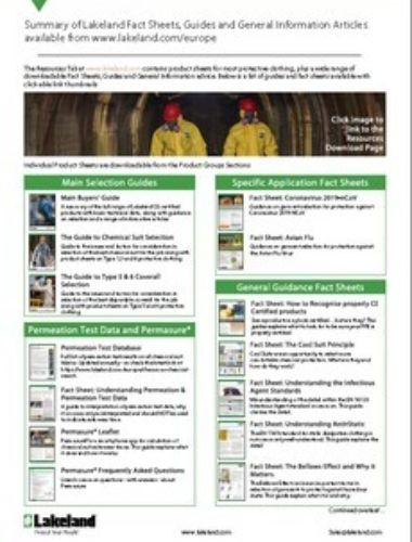 Summary Of Fact Sheet Thumbnail
