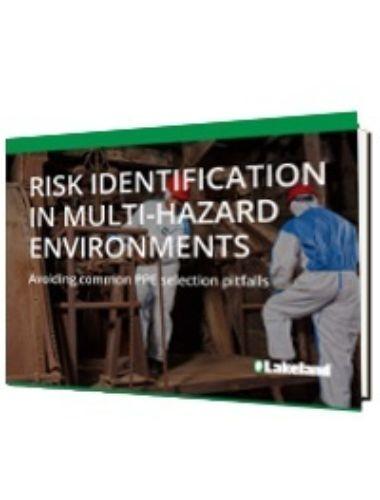 Risk Identification In Multi Hazard