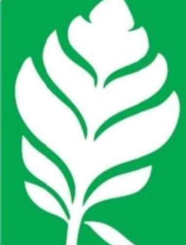 Lakeland Leaf Thumbnail